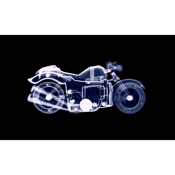 Sammy's Bike by Tushar Waghela
