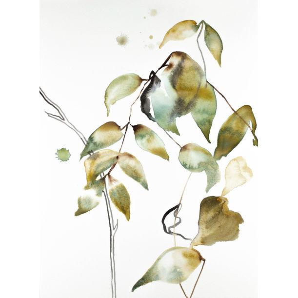 The Woods No. 103 by Elizabeth Becker