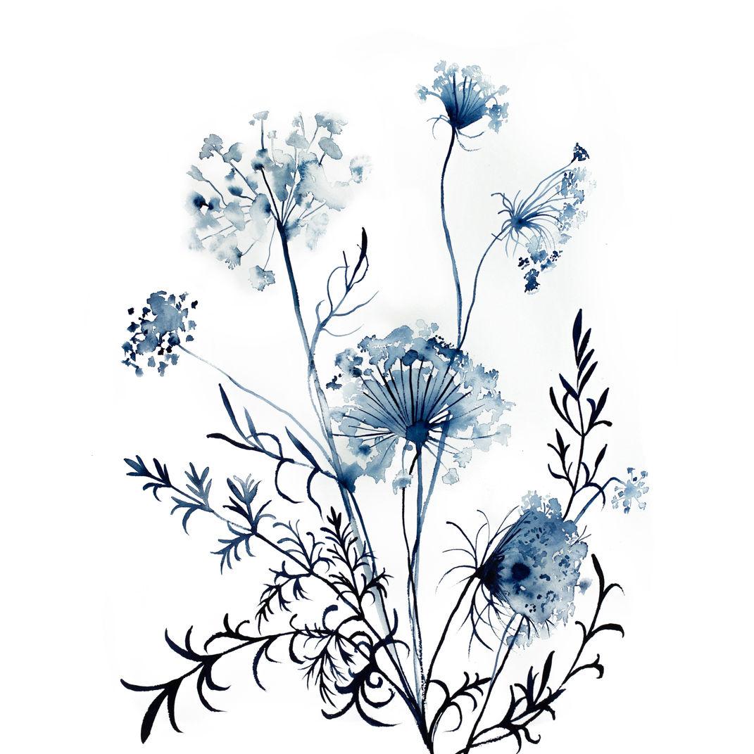 Queen Anne's Lace No. 10 by Elizabeth Becker