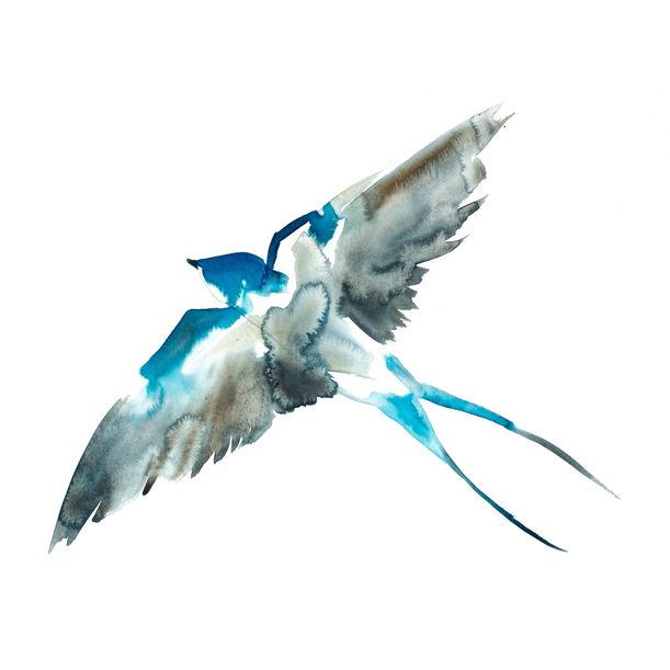 Swallow No. 10 by Elizabeth Becker