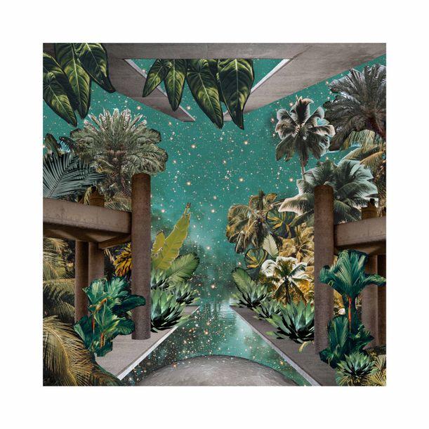 Brutal Jungle by Fei Alexeli