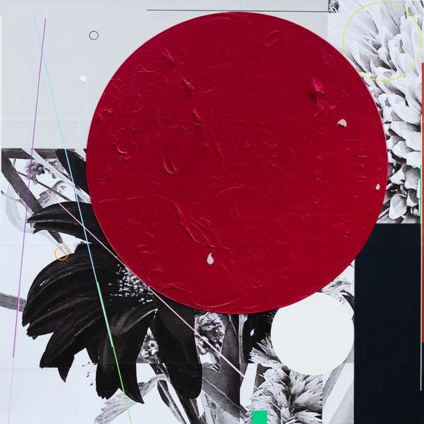 Black Geberas by Lee Heejoon