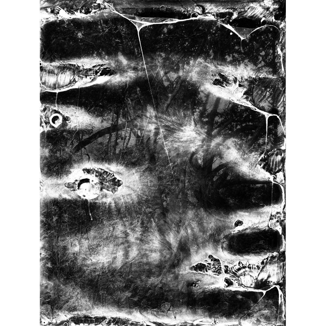 Spirit of Forest 01 by Yasuo Kiyonaga