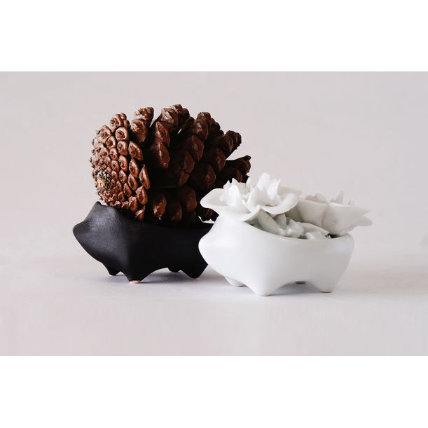 Blooming Hedgehog - Decoration - White by AKAMU