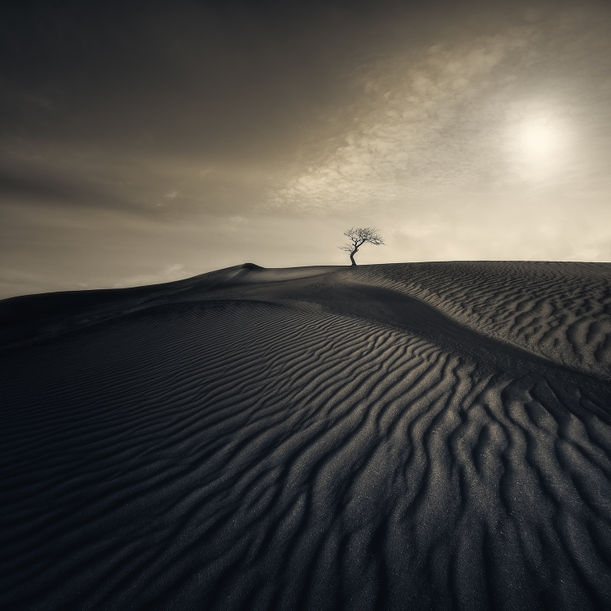 Desert Waves by Nick Psomiadis