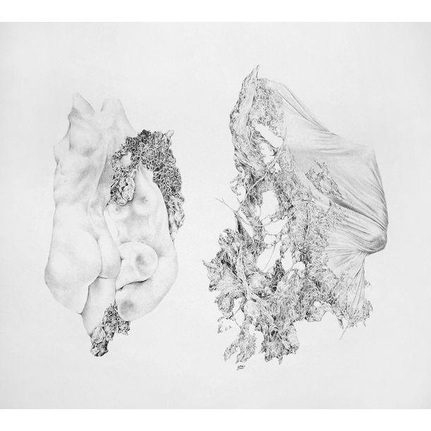 Womb by Aeropalmics