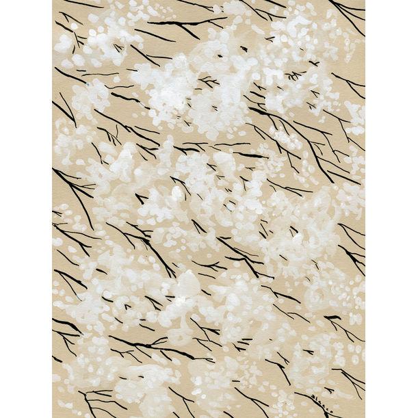 White blossom by Elena Blanco