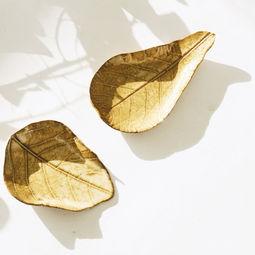 Leaf up - Mame dish by AKAMU