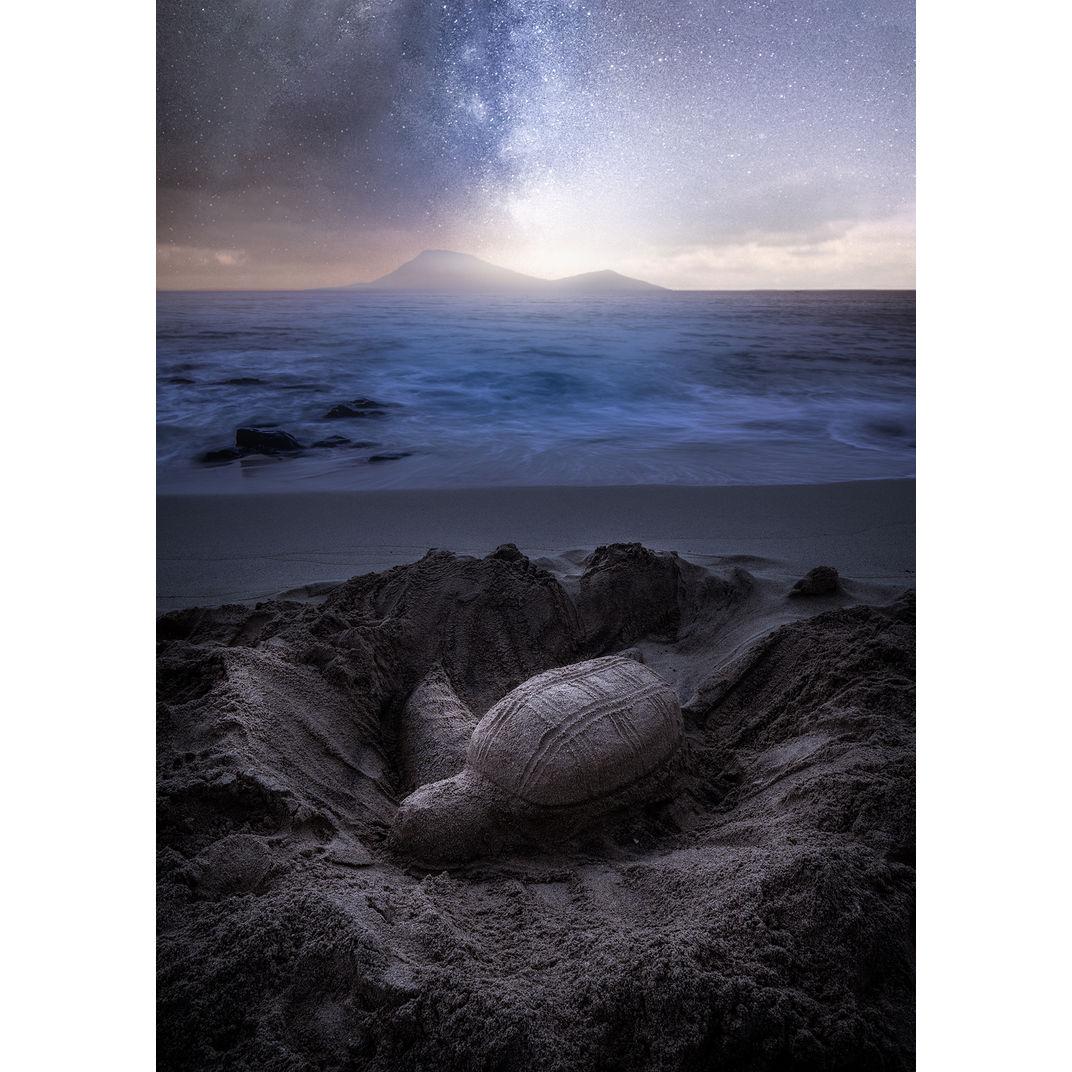 The Break of Dawn by Harry Jones