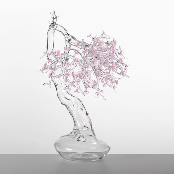 Blossom Bonsai by Simone Crestani