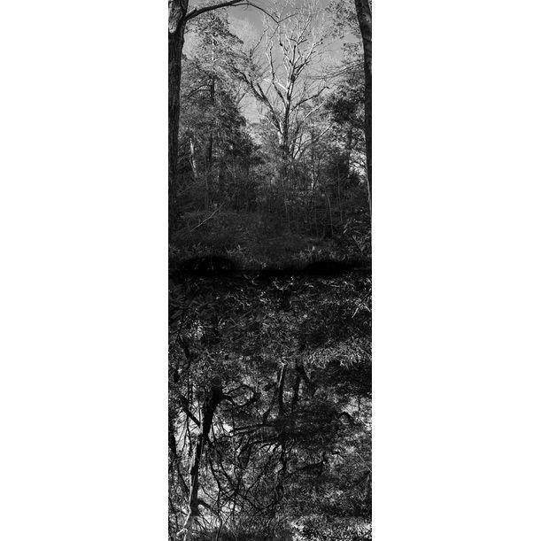 Reflecting landscape 12 by Yasuo Kiyonaga