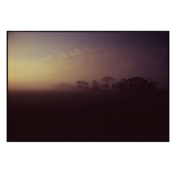 Hopetoun Misty Morning #2 by Damian Seagar
