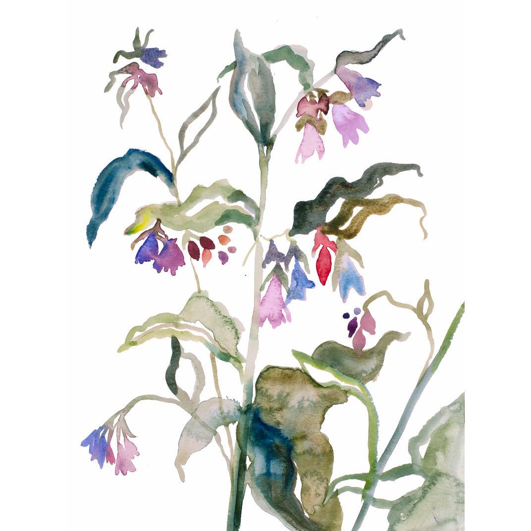 Floral No. 9 by Elizabeth Becker