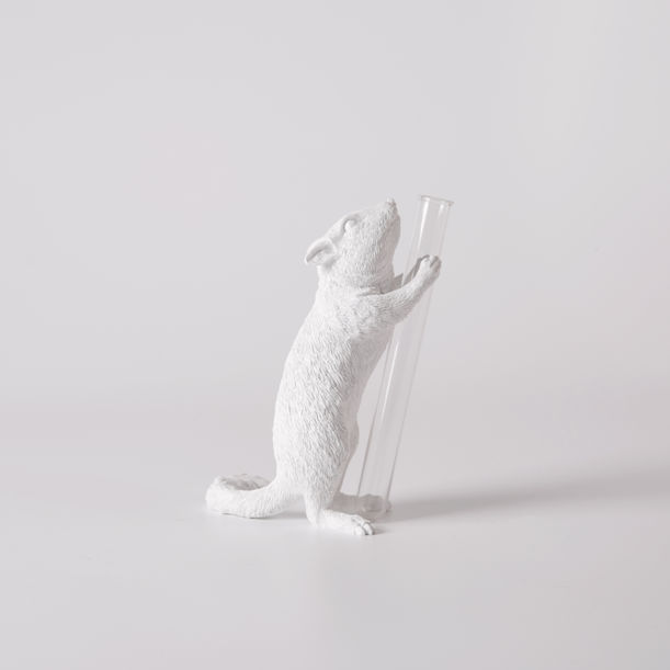 Chipmunk X Vase - Present#01 by haoshi design