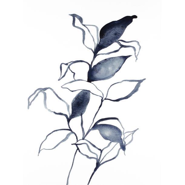 Plant Study No. 73 by Elizabeth Becker