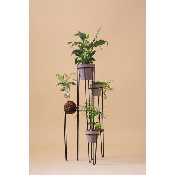 Aurea - black  plant stand 6 by Fi