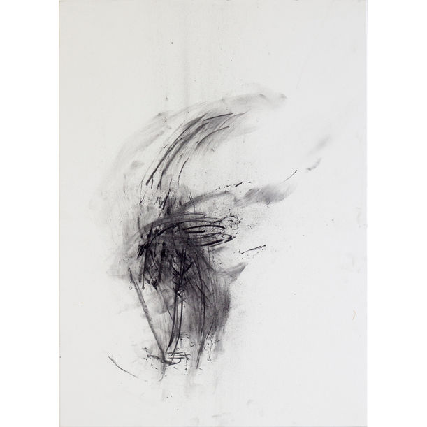 The fleeting edge #1 by Tassia Bianchini