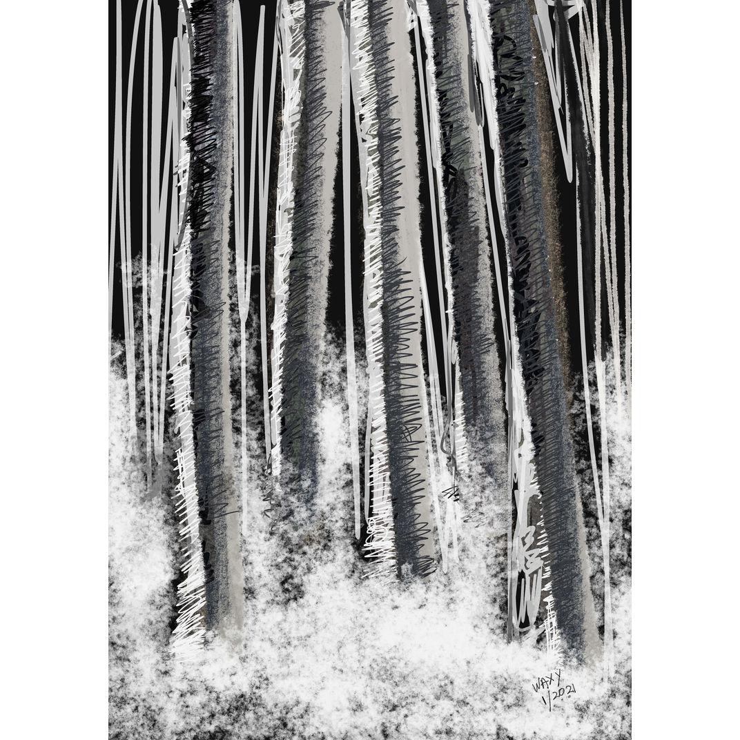 Birch trees in winter by Tan Kah Wah