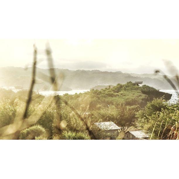 Mist by Isdhani Nurrahmah