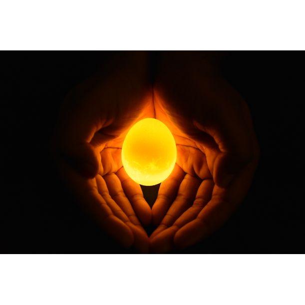 Golden Egg by Vinayak Sharannavar
