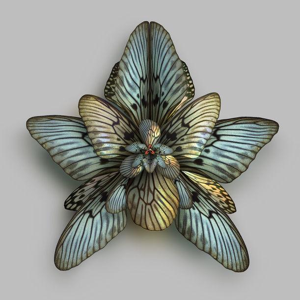 Mimesis Magnolia Astonish by Seb Janiak