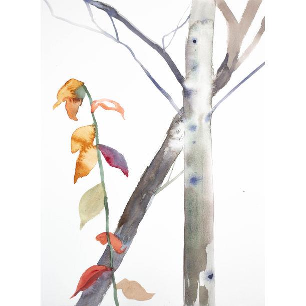 The Woods No. 97 by Elizabeth Becker