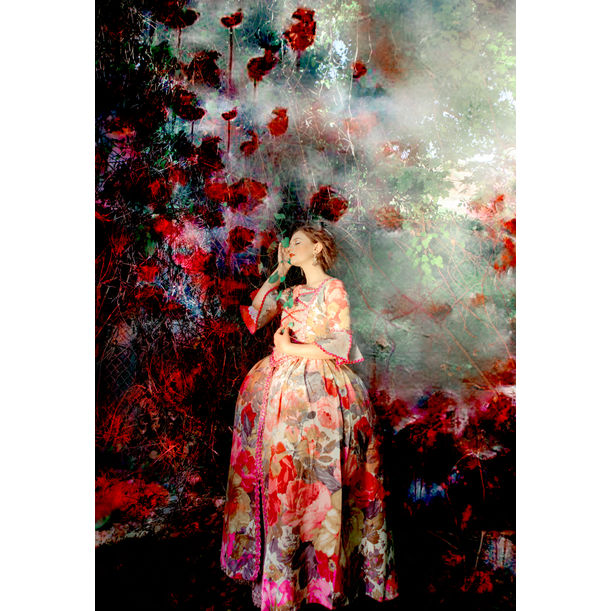 The soul of roses by Viet Ha Tran