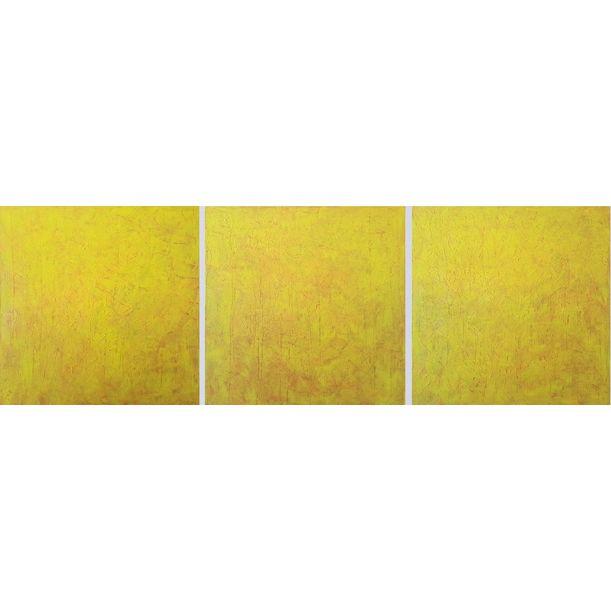 Falling stars - triptych by Ivana Olbricht