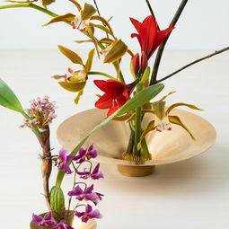 Spin Ikebana Vase by Takenouchi Webb
