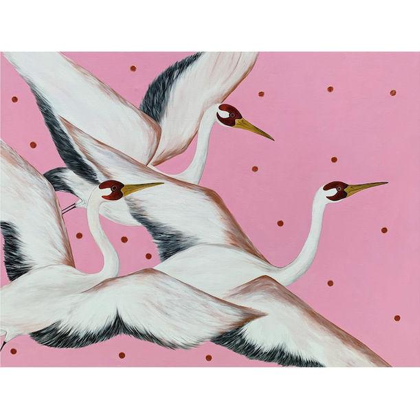 Fly Away by Asia Hillion Kvacova