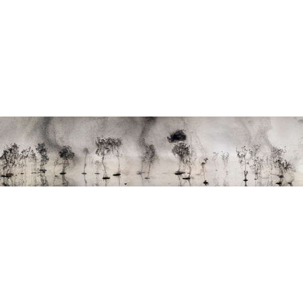 Mushrooms and Trees 2 by Van Chu
