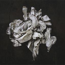 Litter 2 by Ade Santora