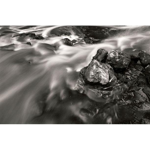 The Stream by Tal Paz-Fridman