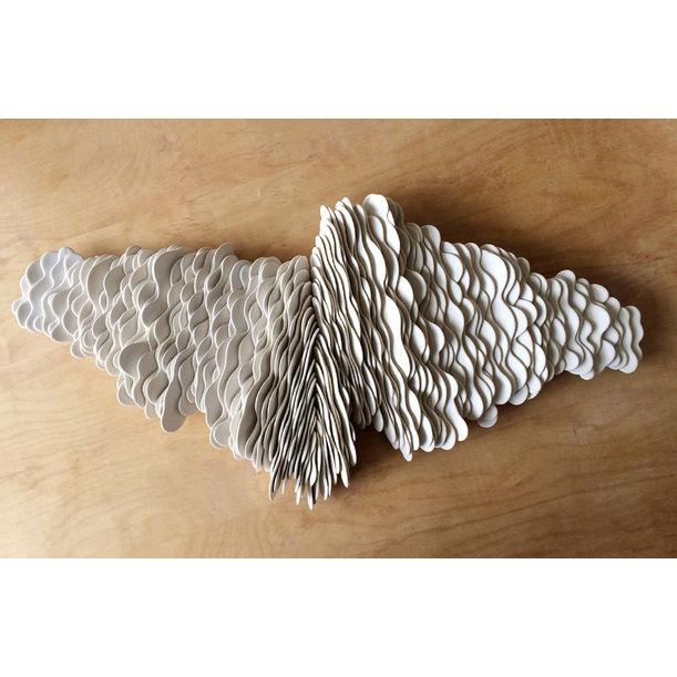 Cumulus - Wing by Liz Quan