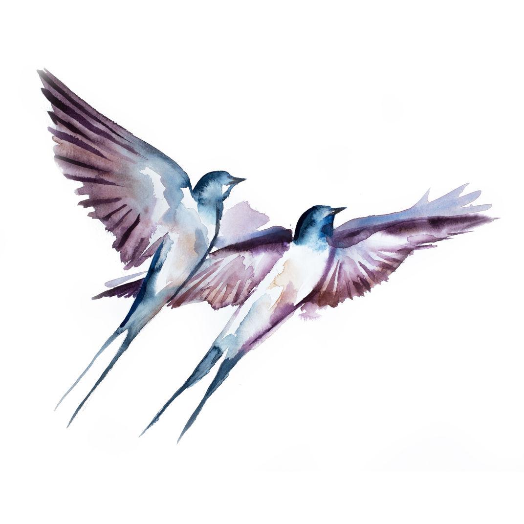 Swallows in Flight No. 38 by Elizabeth Becker