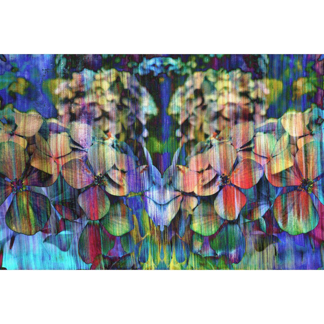 Hydrangeas in Woodstock by Sumit Mehndiratta