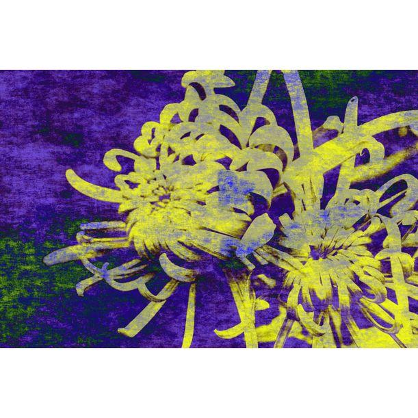 Euphoria botani Nº04 by Sumit Mehndiratta