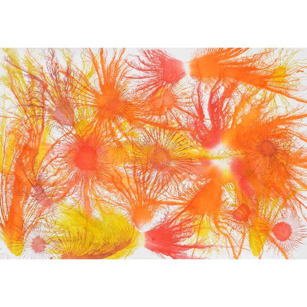 Exploflora Series Nº33 by Sumit Mehndiratta