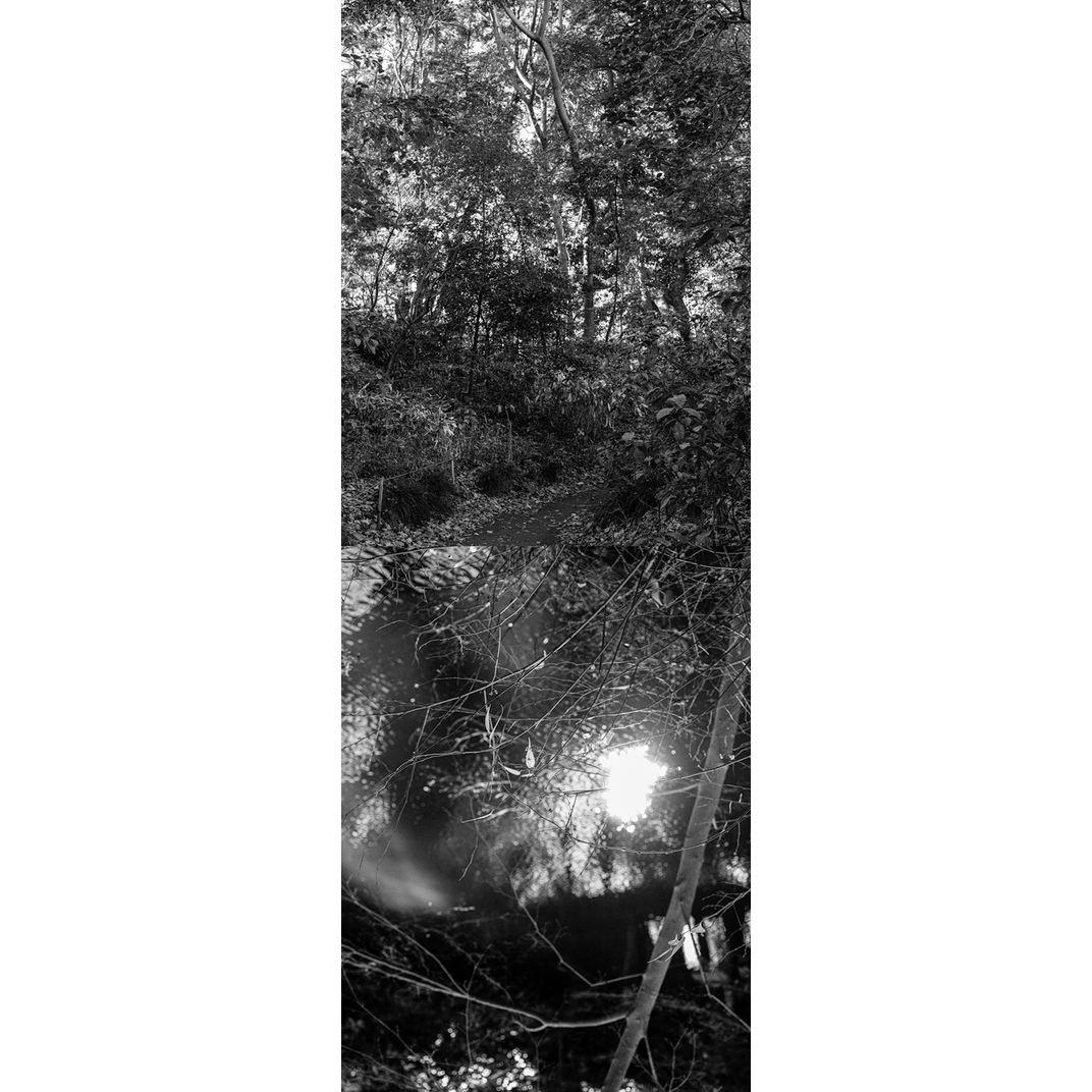 Reflecting landscape 03 by Yasuo Kiyonaga