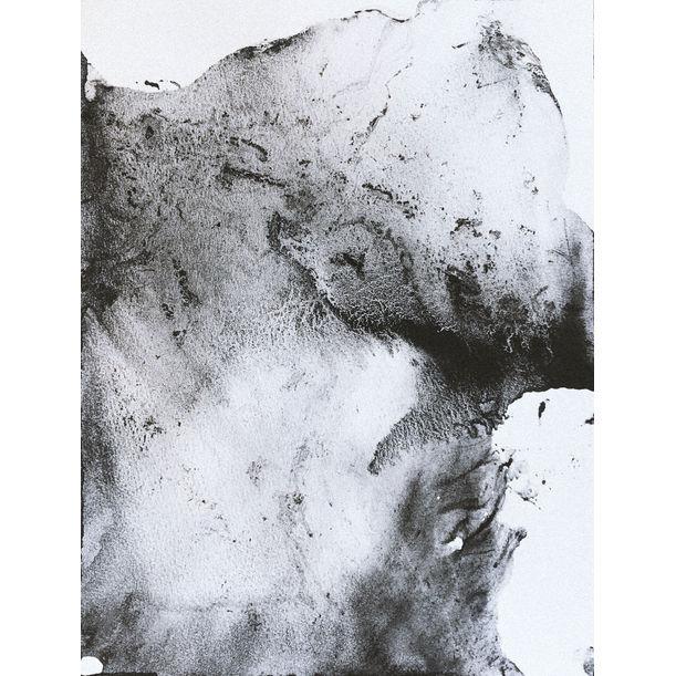 Paper #16 by Maja Malmcrona