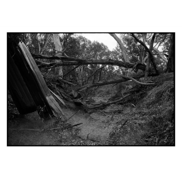 Simmon's Creek by Damian Seagar