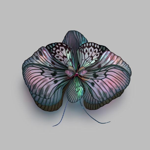 Mimesis Orchidaceae 7 by Seb Janiak