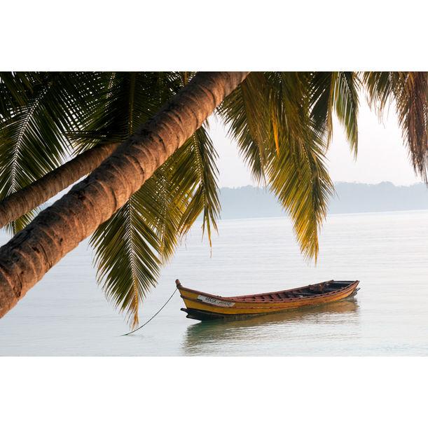 Boat Under the Tree by Shantonobho Das
