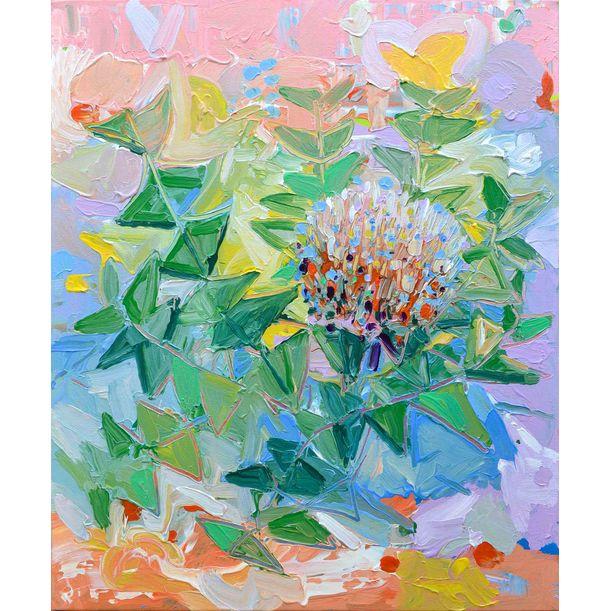 Baxter's Banksia by Joseph Villanueva