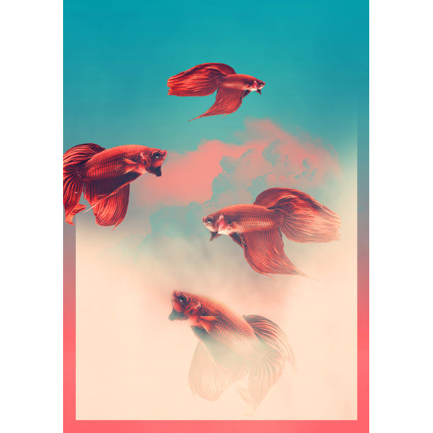FISH IV by Marlies Plank