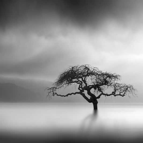 Illustration of Dreams by George Digalakis