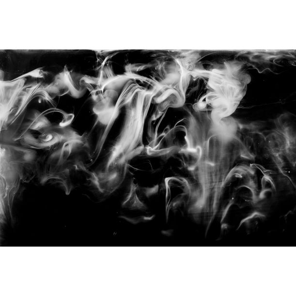 Ghost by Javiera Estrada