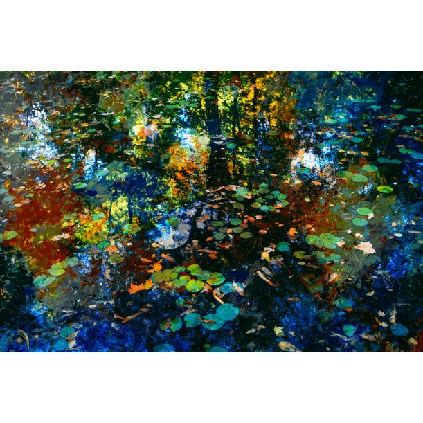 The breath of autumn by Viet Ha Tran