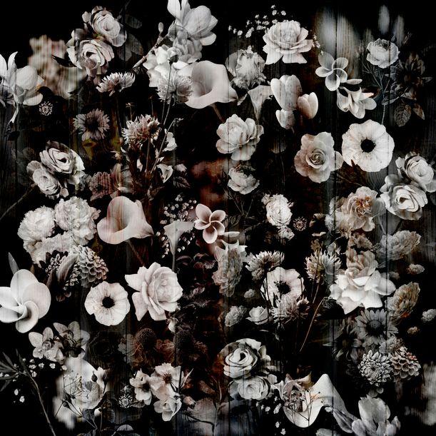 Night garden #7 by Larisa Siverina