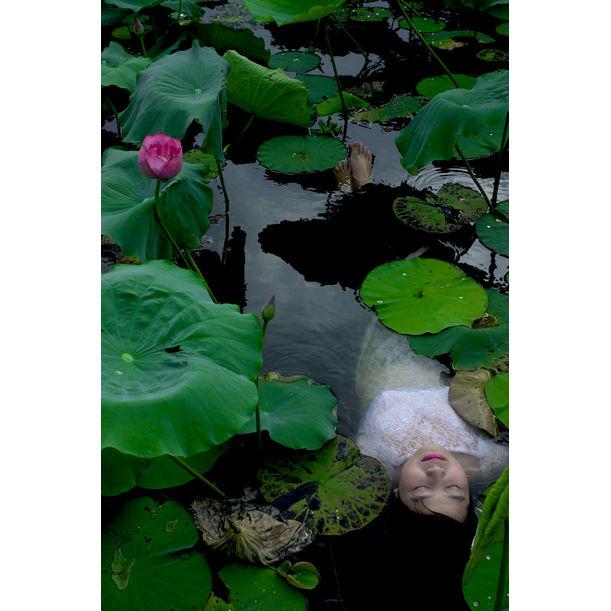 The Lotus Lake II by Viet Ha Tran